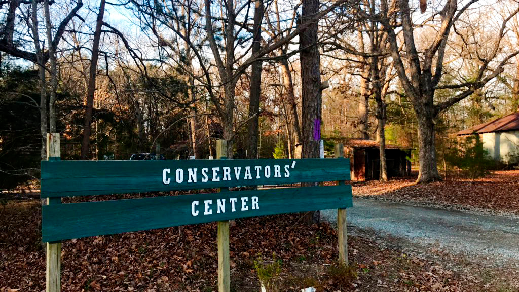 The Conservators Centre says a worker has been killed by a lion that got loose from a locked space, Sunday, Dec. 30, 2018, in Burlington, N.C. The facility was founded in 1999 and is in Burlington, about 50 miles northwest of Raleigh. (WTVD/ABC11 via AP)