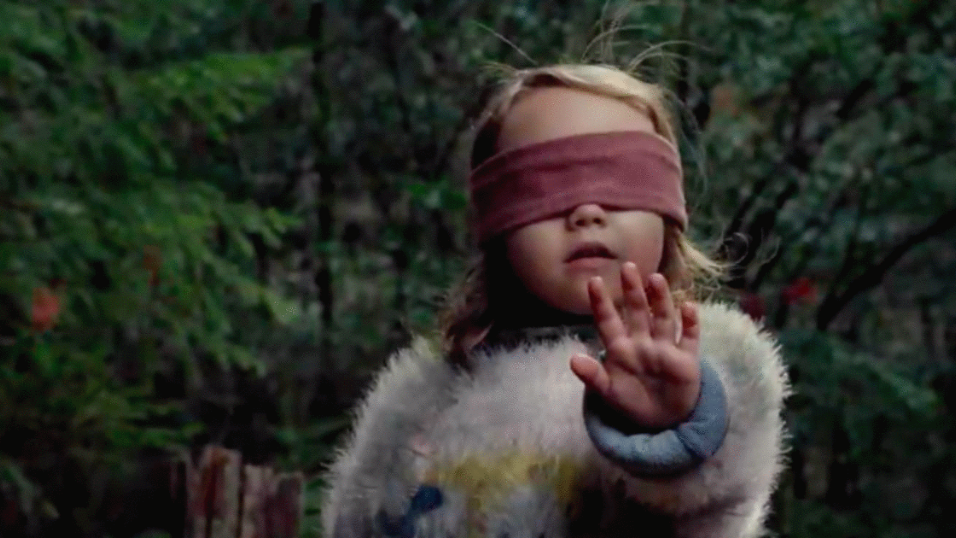 Netflix warns fans against attempting viral 'Bird Box' challenge