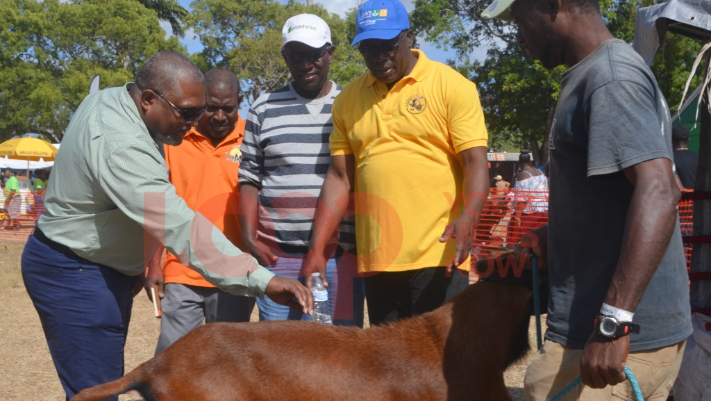 Minister Indar Weir (left) toured Agrofest along with the CEO of the Barbados Agrivulture Society James Paul (right)