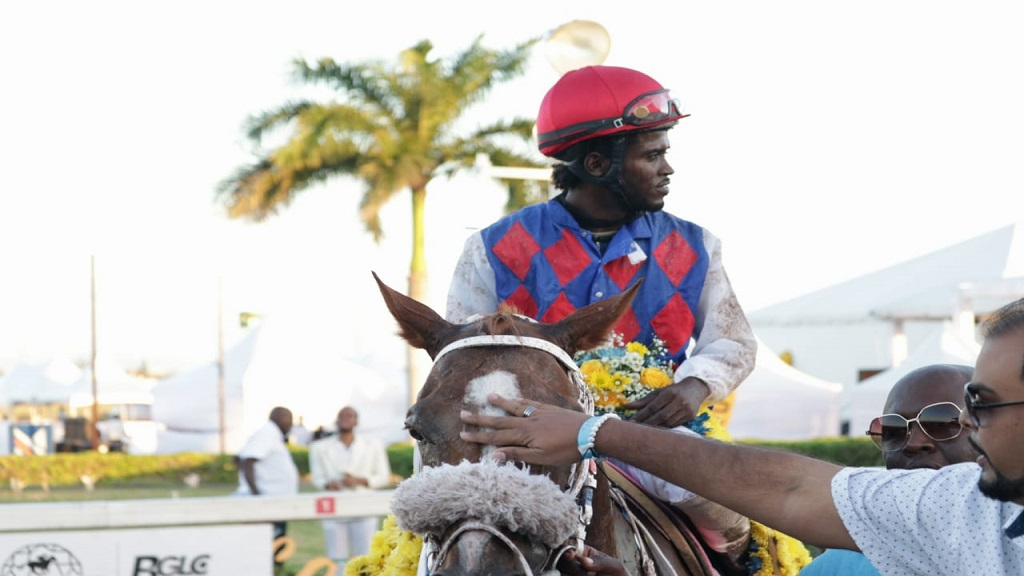 Jockey Robert Halledeen  guides WILL IN CHARGE to the winners' enclosure after the 5-year-old chestnut horse won the Diamond Mile by a short head at Caymanas Park on Saturday, December 1, 2018 (PHOTOS: Shawn Barnes).