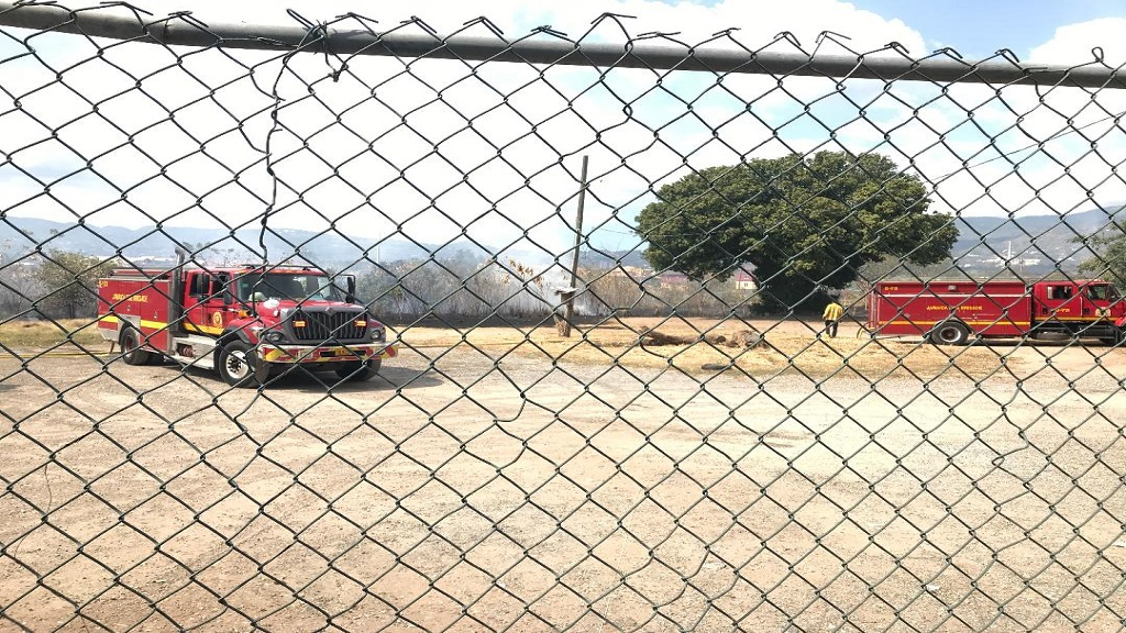 Fire units on the grounds of Kings House in response to a bush fire there on Thursday afternoon.