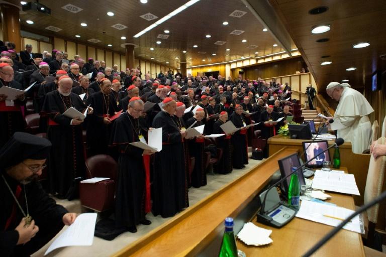 Le pape François face aux cardinaux et évêques lors d'un sommet contre les agressions sexuelles commis sur des enfants par des prêtres au Vatican le 23 février 2019