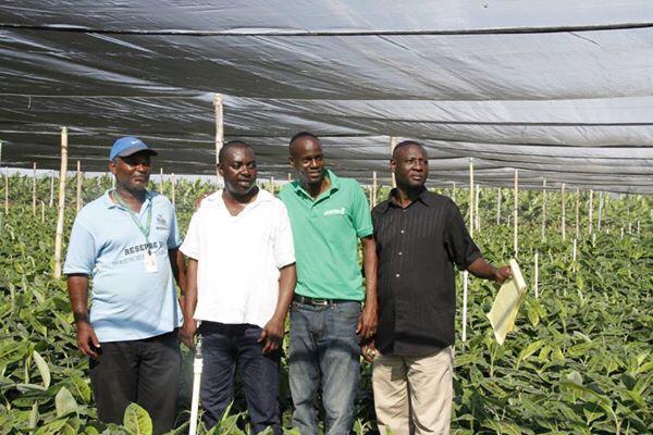 Le président Jovenel Moïse (maillot vert) au milieu de membres de la firme Agritrans, en 2015/ Photo : Twitter Ministère de la Communication