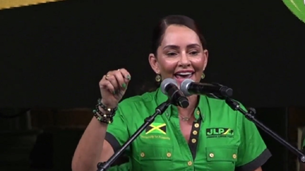 Ann-Marie Vaz addresses labourites at a rally in Eastern Portland on Sunday.