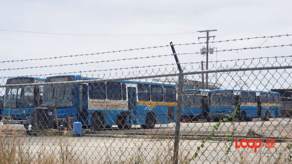 Transport Board buses at the Mangrove Depot (April 2019)