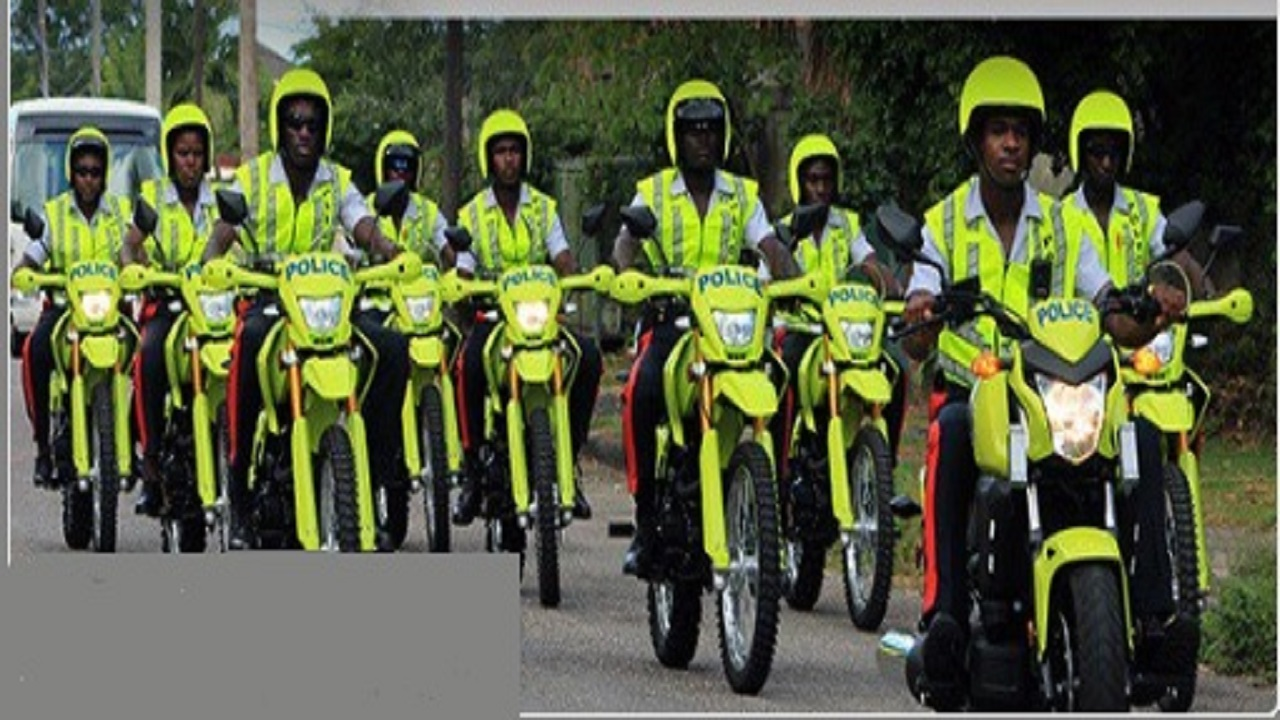 Members of the Public Safety and Traffic Enforcement Branch (PSTEB) on duty.