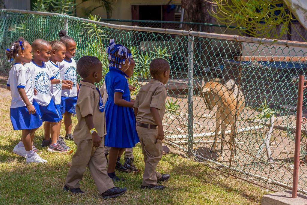 Jamaica Energy Partners and West Kingston Power Partners treated over 60 students from Glenford Phipps Basic School and Prophecy Basic School to a day of fun at Hope Zoo.