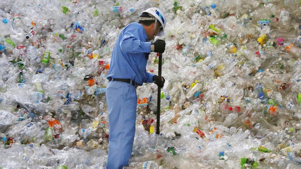 In this June 18, 2019, photo, a plastic recycling company worker sorts out plastic bottles collected for processing at Tokyo Petbottle Recycle Co., Ltd, in Tokyo. (AP Photo/Koji Sasahara)