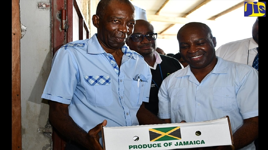 Minister without Portfolio in the Ministry of Agriculture, JC Hutchinson (left), and Acting Permanent Secretary in the ministry, Dermon Spence (right), hold a box of Jamaican mangoes that was among the first batch to be exported to the United States in 20 years, at the Sangster International Airport Export Complex in Montego Bay, St James on Thursday. At centre is Manager of the complex, Dalton Hastings.