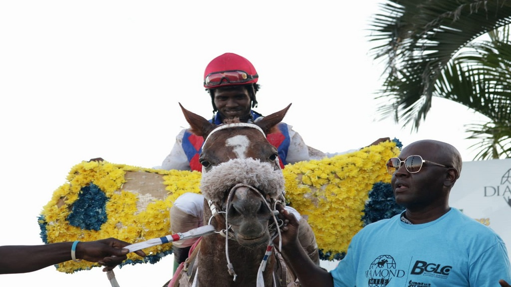 In this December 2018 file photo, jockey Robert Halledeen guides WILL IN CHARGE to the winners' enclosure after the horse won the Diamond Mile at Caymanas Park. (PHOTOS: Shawn Barnes).