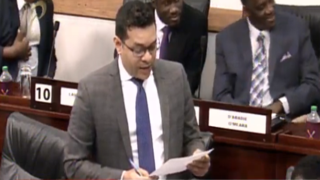 Tourism Minister Randall Mitchell speaks in Parliament on June 26, 2019.