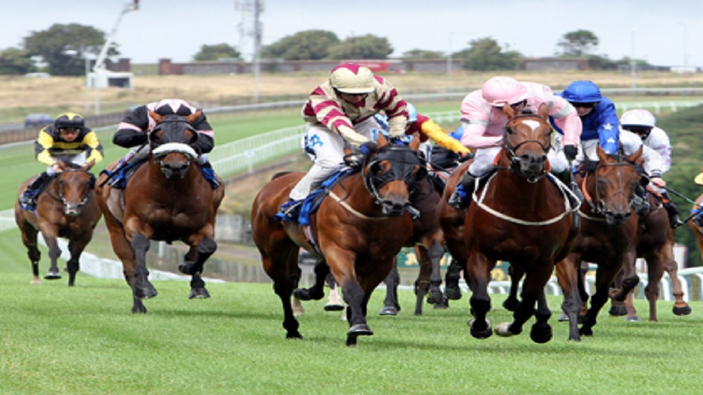 Stock photo of a horse race.