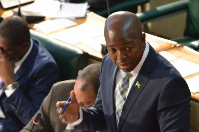 Minister without Portfolio in the Ministry of Economic Growth and Job Creation, Senator Pearnel Charles Jr.