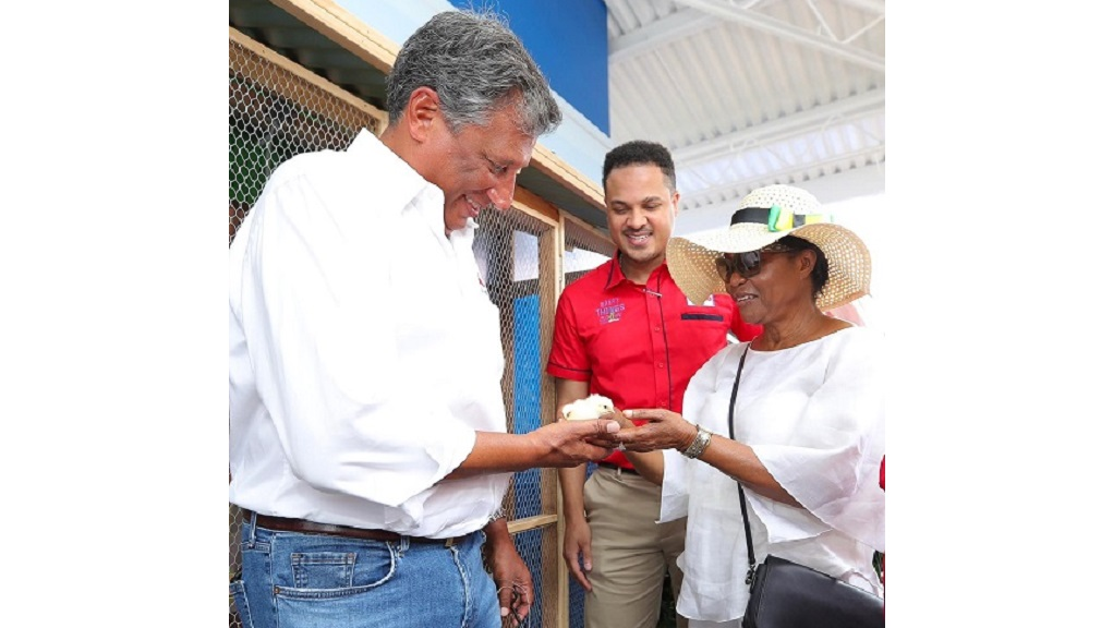 President and CEO of Jamaica Broilers Group, Christopher Levy (left)  and Lady Allen (right) admire a baby chick during her visit to the Hi-Pro Village as part of an official tour of the Denbigh Showground on Day 1. Looking on at centre is Dayne Patterson, Business Development Manager, Hi-Pro.