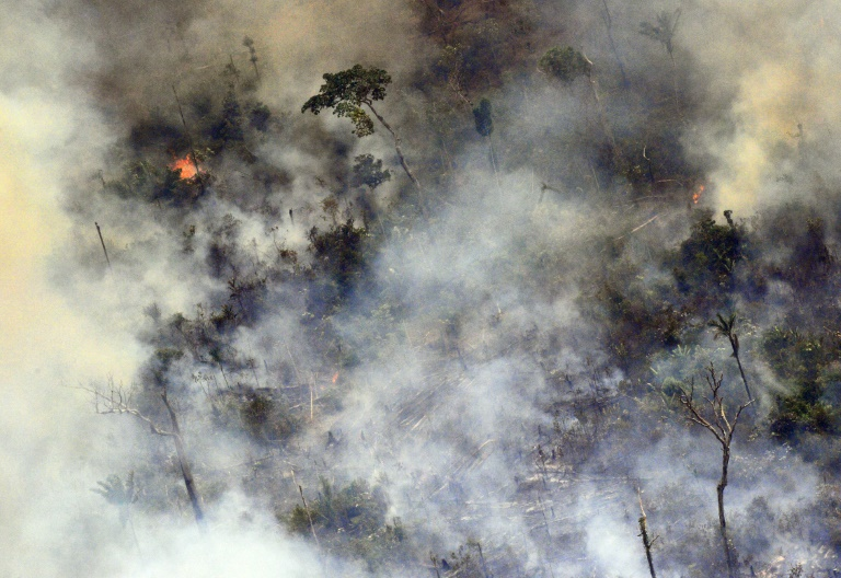 Au-delà des incendies, les multiples périls qui menacent l'Amazonie. Photo : AFP