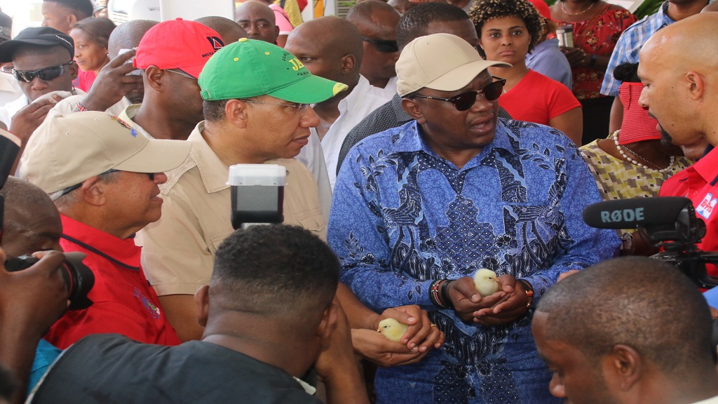 Kenyan President, Uhuru Kenyatta (centre), and Prime Minister Andrew Holness ( second left) discuss baby chicks in the Ho-Pro Village at the Denbigh Show under the direction of  Colonel Jaimie Ogilvie (right), Assistant Vice President, Hi-Pro, on Tuesday.