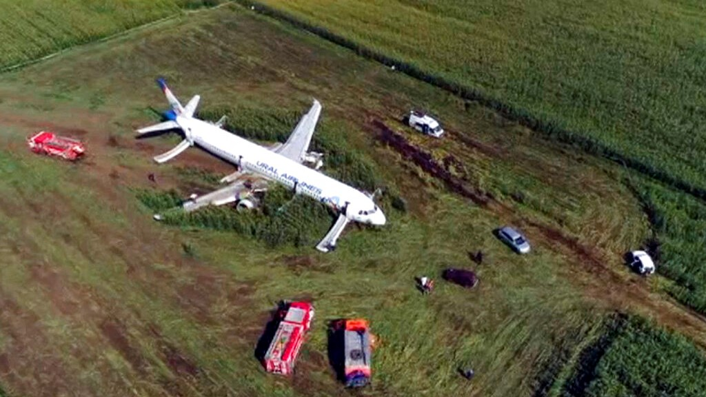 In this video grab provided by the RU-RTR Russian television, a Russian Ural Airlines' A321 plane is seen after an emergency landing in a cornfield near Ramenskoye, outside Moscow, Russia, Thursday, Aug. 15, 2019.  (RU-RTR Russian Television via AP)