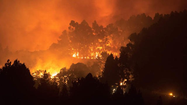 En Amérique du Sud, le Brésil est le pays le plus touché par les feux de forêt en 2019, suivi par le Venezuela (26.453) et la Bolivie (16.101).[©DESIREE MARTIN / AFP]