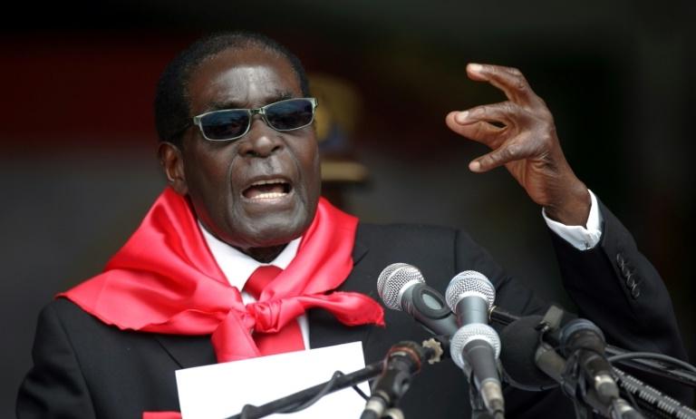 Robert Mugabe lors des cérémonies pour son 90e anniversaire à Marondera, le 23 février 2014 afp.com - Jekesai NJIKIZANA
