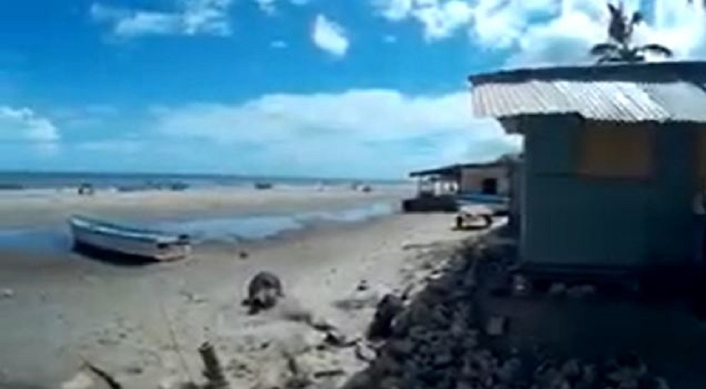Screen grab of a video posted to YouTube titled 'Moruga beach - Trinidad' by P Latchman