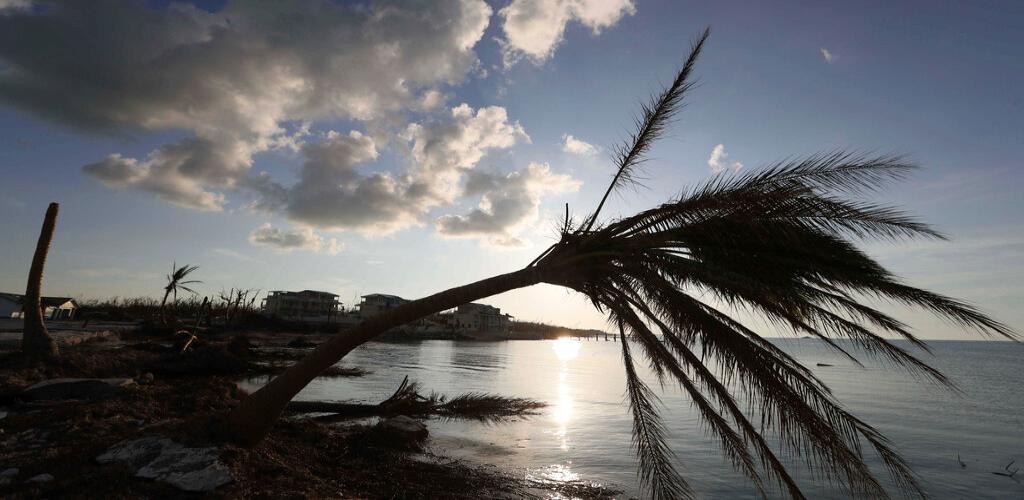 A bent palm tree is silhouetted against a setting sun, in the aftermath of Hurricane Dorian in Marsh Harbor, Abaco Island, Bahamas, Saturday, Sept. 7, 2019.