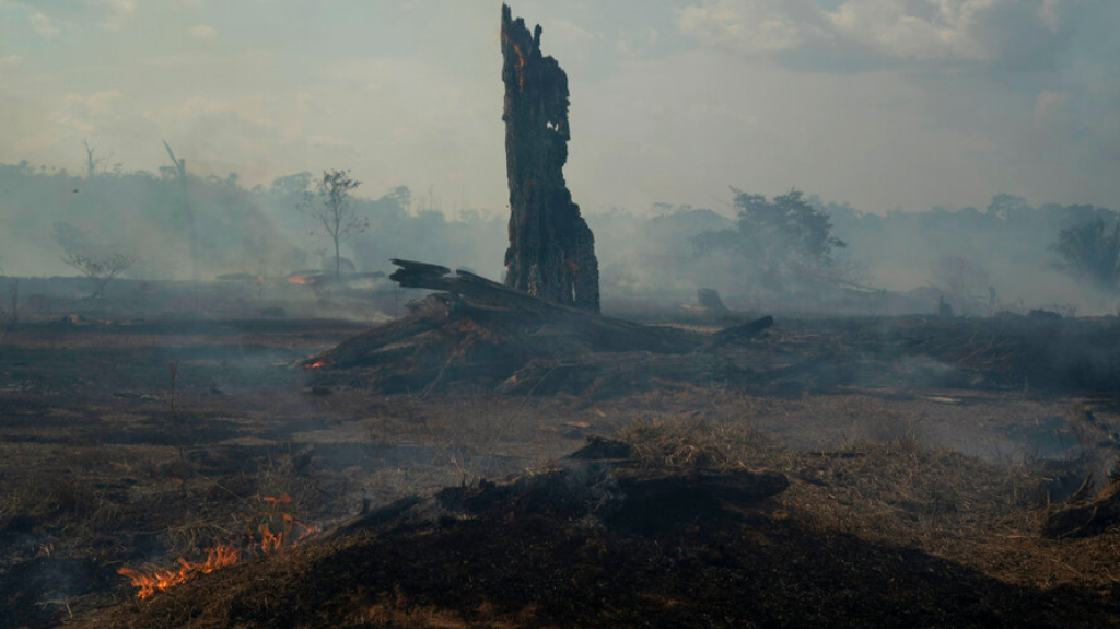 Land smolders during a forest fire in Altamira in Brazil's Amazon, Monday, Aug. 26, 2019. The fire is very close to Kayapo indigenous land located on the Bau indigenous reserve. (AP Photo/Leo Correa)