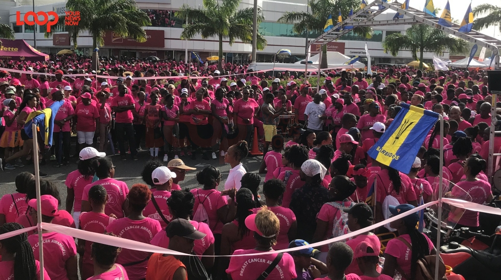 A sea of pink in Warrens for the 2019 Walk for the Cure.