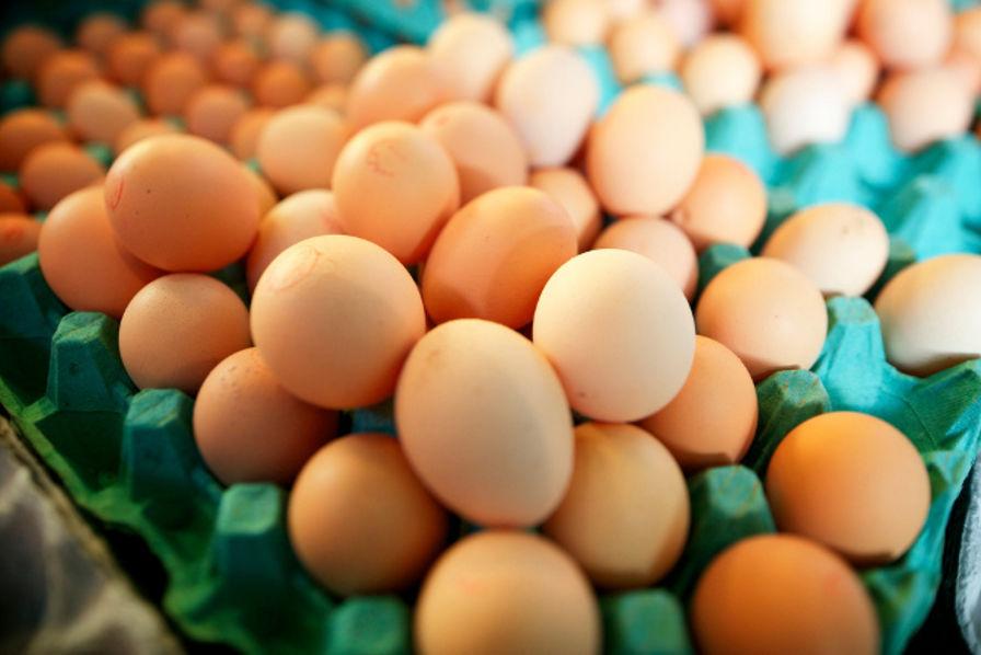 L'Association nationale des producteurs d'oeufs affirme avoir noté une nette diminution de la quantité d'œufs exportés en Haiti, le seul marché d'exportation de ce secteur.