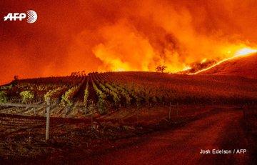 """Les flammes du """"Kincade Fire"""" approchent des vignes près de Geyserville (Californie) le 24 octobre 2019 AFP - JOSH EDELSON"""