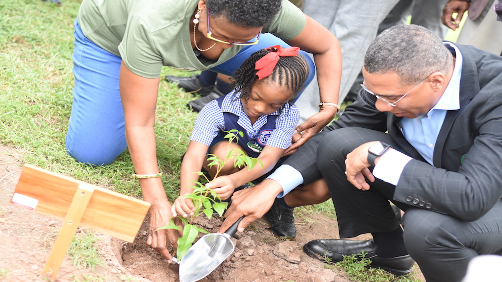 Prime Minister Andrew Holness and Jamaica House Basic School student Zaire Quest (centre) plant a Jamaican Mahogany tree, at the launch of the National Tree Planting Programme on Friday at Jamaica House. Looking on is CEO at the Forestry Department and Conservator of Forests, Marilyn Headley. (PHOTOS: Marlon Reid)