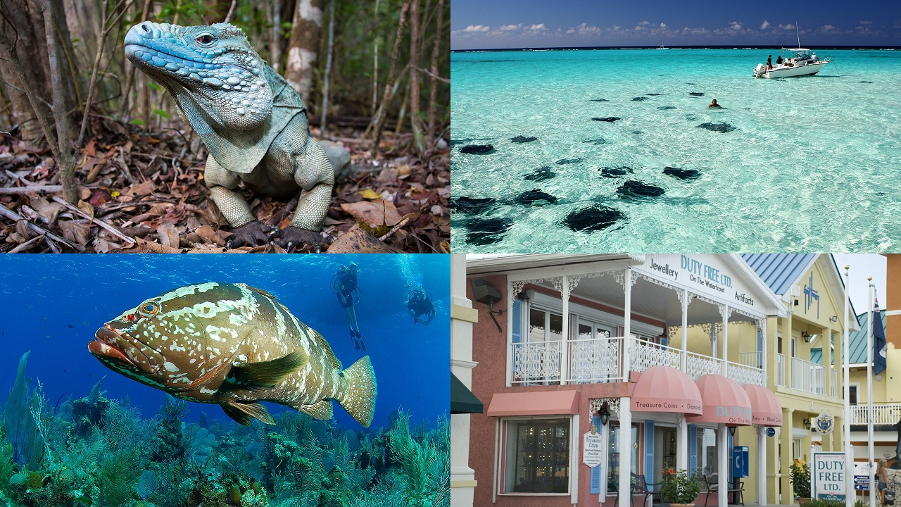 (Images: Courtesy of Cayman Islands Department of Tourism)