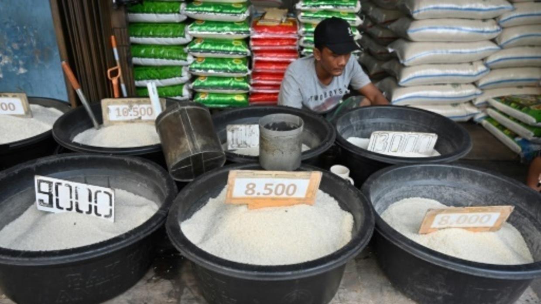 """Face au diabète, des Indonésiens remettent en cause """"l'addiction au riz"""""""
