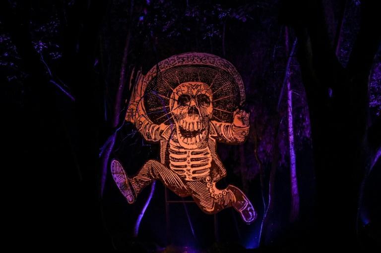 Les squelettes sont les acteurs principaux du Jour des Morts, le 30 octobre 2019 à Mexico afp.com - Pedro PARDO