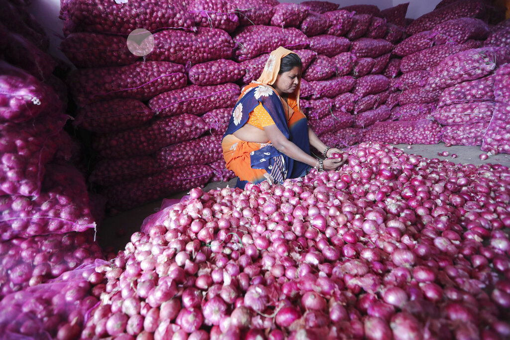Onion prices are seen by some as a key indicator of economic stability in India, and opposition parties, quick to smell an opportunity, have rallied in the streets wearing onion garlands and offering onions as wedding gifts. (AP Photo)