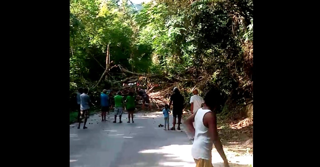 Earlier: A tree blocked both sides of the North Coast Road