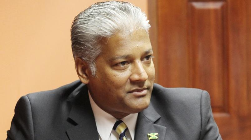 Jamaica Civil Aviation Authority Director-General Nari Williams.