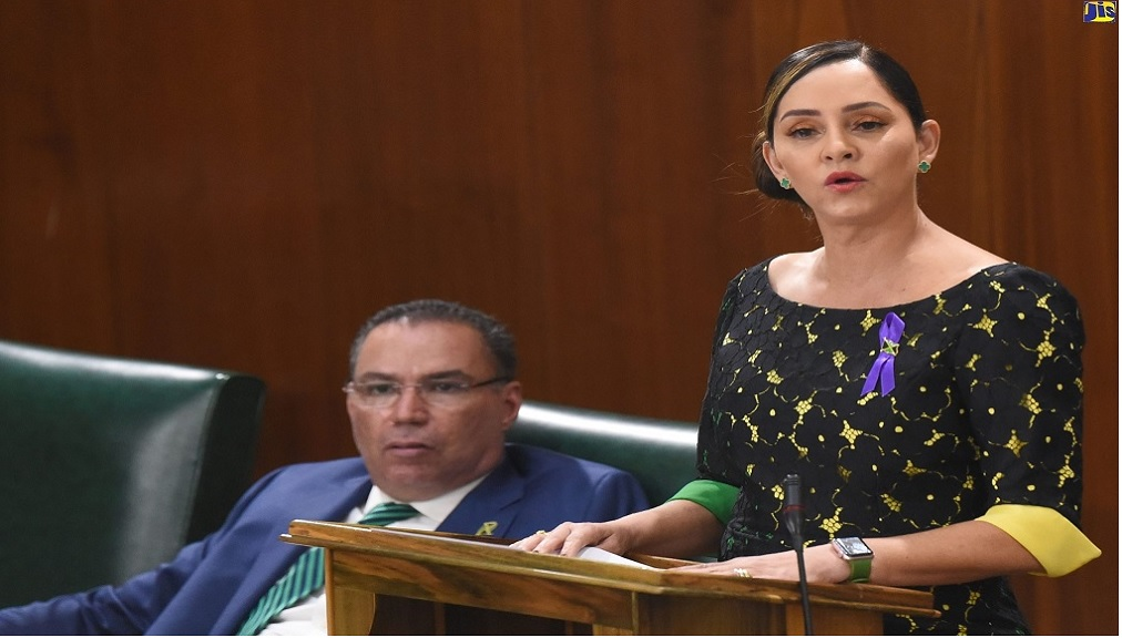 Member of Parliament for East Portland, Ann-Marie Vaz speaks in parliament. Her husband, Daryl Vaz, is seated behind her. (Photo: JIS)