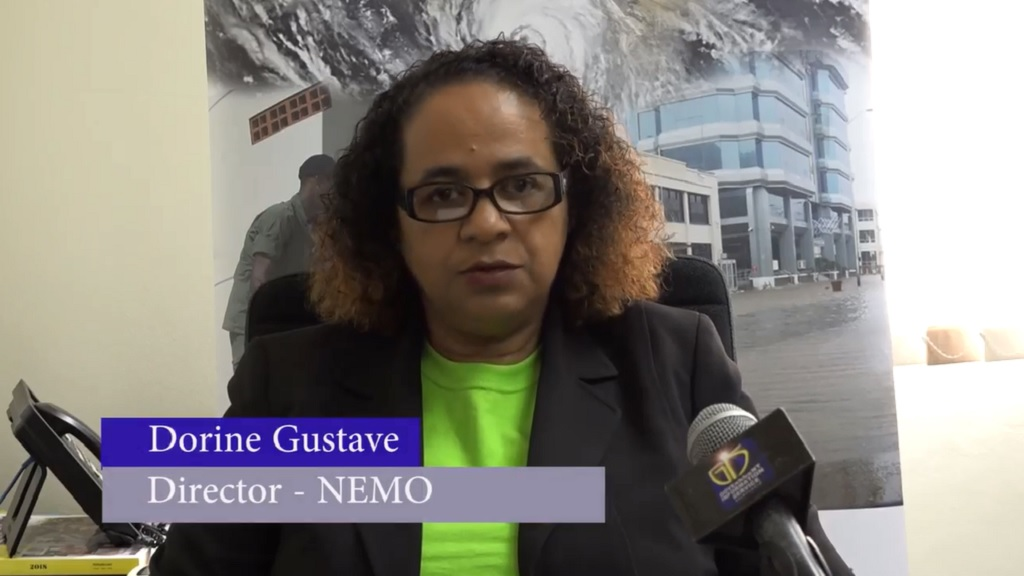 Dorine Gustave, Acting Director of NEMO