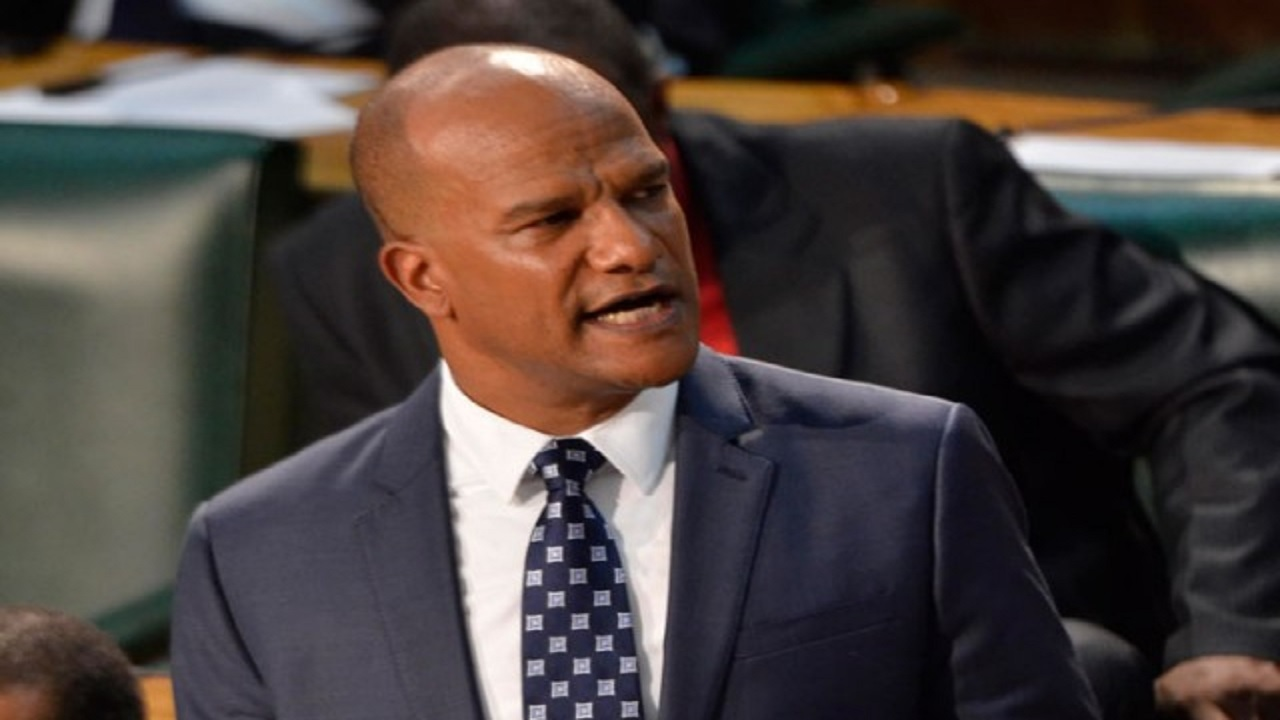 Peter Bunting in Parliament (file photo)