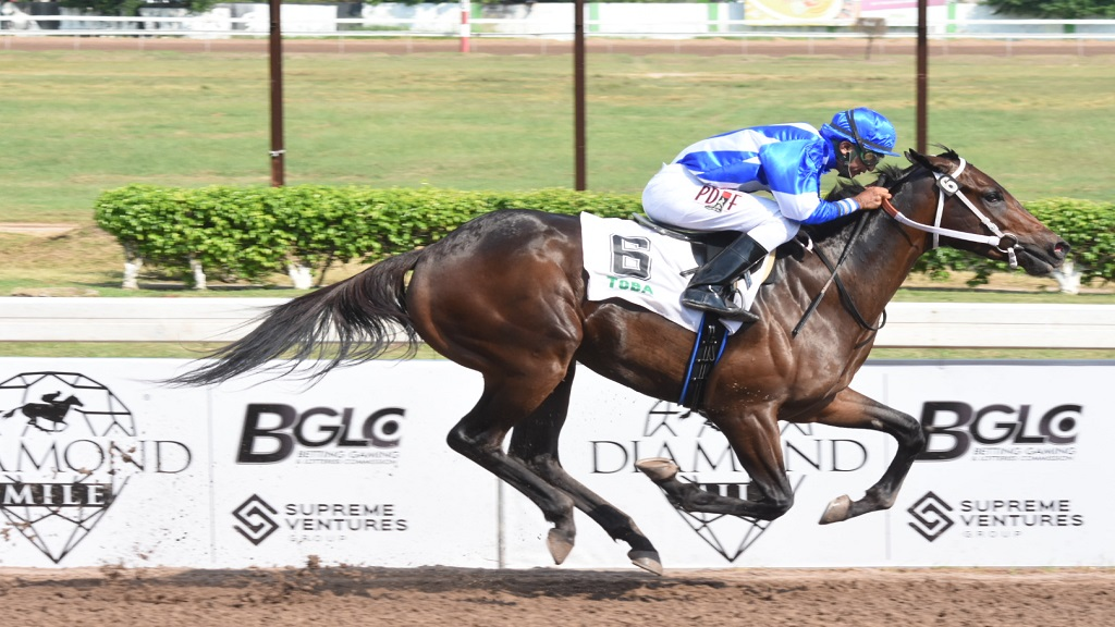 WOW WOW on his way to victory on Diamond Mile Day at Caymanas Park on Saturday, November 9, 2019. Gary Subratie's WOW WOW is down to contest the second race today and should easily continue his winning streak. (PHOTO: Marlon Reid).