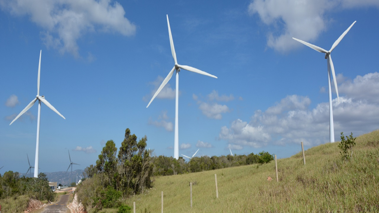 Wigton Windfarm is the largest wind-energy facility in the English-speaking Caribbean and was built by the Government to diversify Jamaica's energy mix.