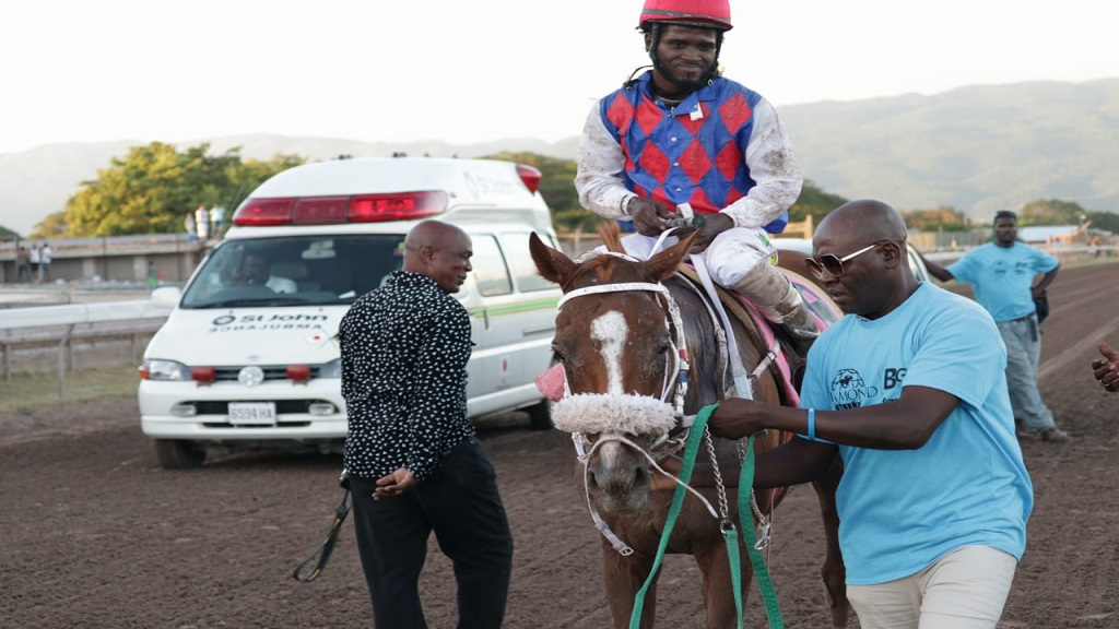 Will In Charge, with  jockey Robert Halledeen, on his way to the winners enclosure after winning the 2018 running of the rich Diamond Mile at Caymanas Park.