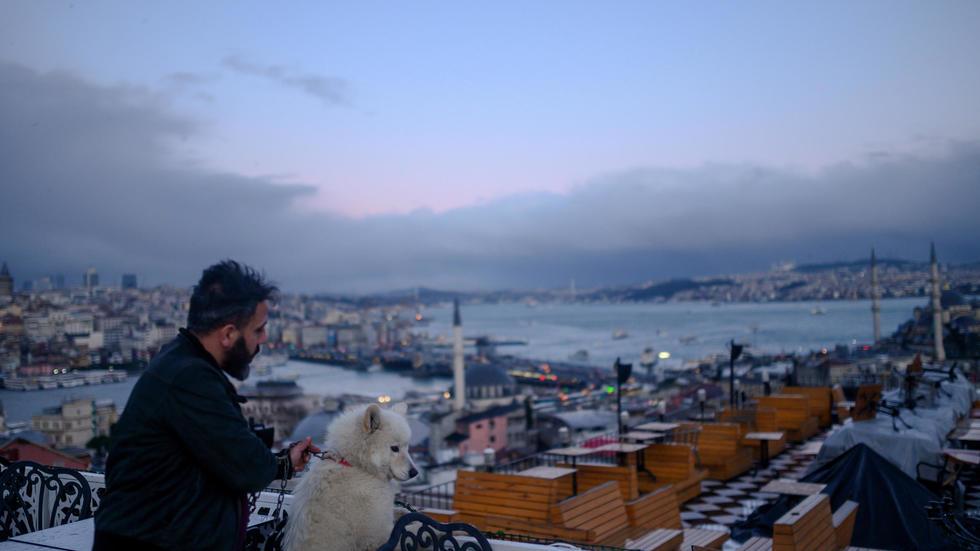 Pourquoi le chien est-il l'ami de l'homme? A cause de son grand coeur