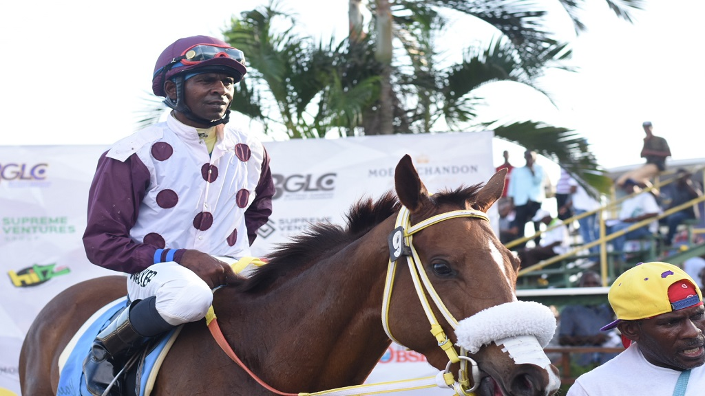 Jockey Omar Walker aboard LADY BLUE in the winner's enclosure after guiding the filly to victory in the BG&LC Chairman's Trophy over the round-five course at Caymanas Park on Saturday, November 9, 2019. (PHOTO: Marlon Reid).