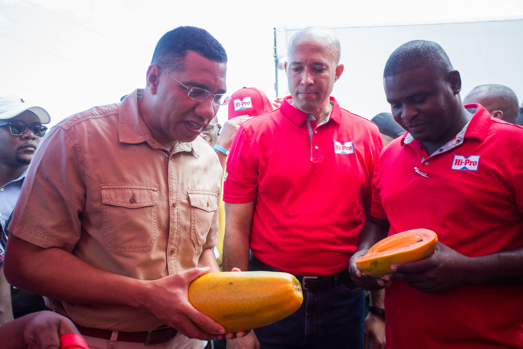 Prime Minister Andrew Holness (left) examines the new Apache F1 papaya introduced to the market by Hi-Pro, while Colonel Jaimie Ogilvie (centre) Assistant Vice President, Hi-Pro and Rohan Lewis (right), Technical Sales Agronomist at Hi-Pro look on.