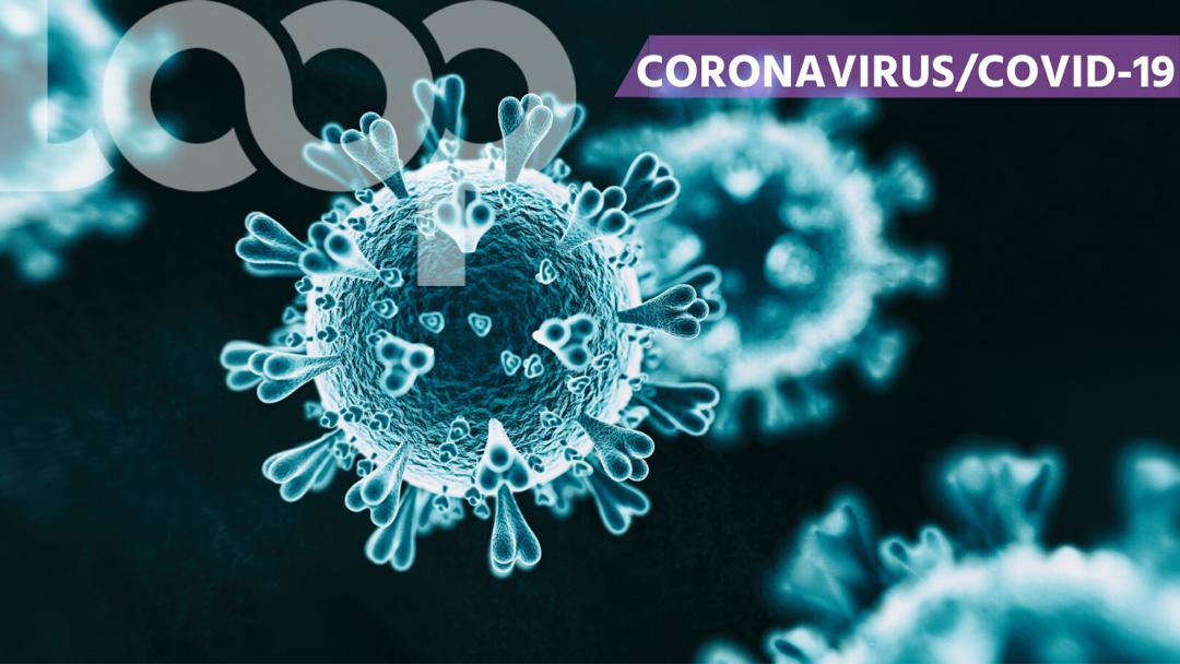 Coronavirus: Haïti vient d'enregistrer deux premiers cas