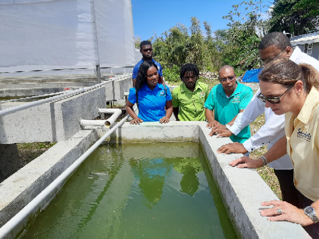 CASE students share in viewing components of the Aquaponics Unit with college administrators and Heidi Clarke, Sandals Foundation Executive Director.