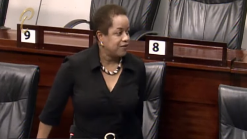 Senator Allyson West speaks in the Senate on June 25, 2019.