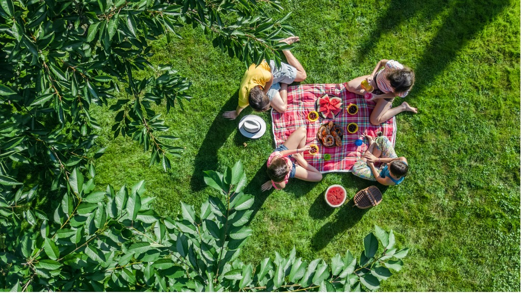 A small family practices social distancing while at picnic. (iStock photo)