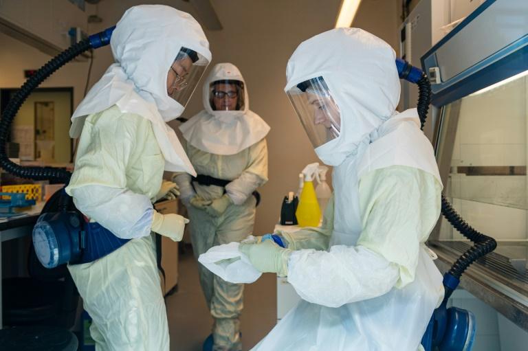 Des scientifiques du centre de recherche de Brunswick (Allemagne) photographiés, le 8 mai 2020 derrière une vitre de protection travaillent sur les virus pour trouver des remèdes à la pandémie actuelle